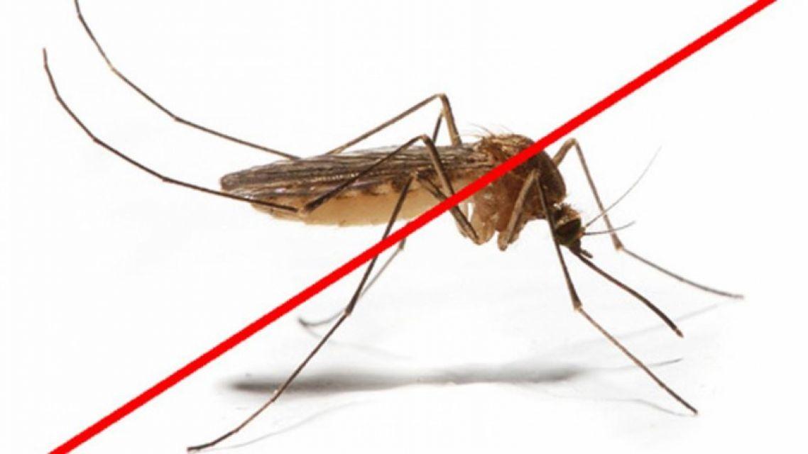 Postrek proti komárom
